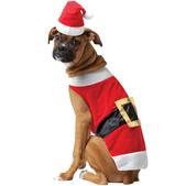 Costume de Père Noël pour chien