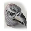 Masque de vautour