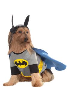 Disfraz de Batman classic para perro