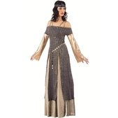 Kostüm Königin Guinevere aus dem Mittelalter