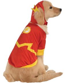 Disfraz de Flash DC Comics para perro