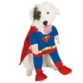 Fato de Super-Homem para cão