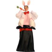 Disfraz del conejo en la chistera