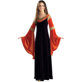 Costume d'Arwen
