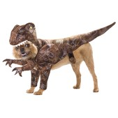 Fato de dinossauro para cão
