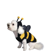 Costume d'abeille pour chien
