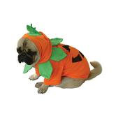 Halloween pumpkin costume for dogs