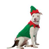 Costume d'elfe pour chien